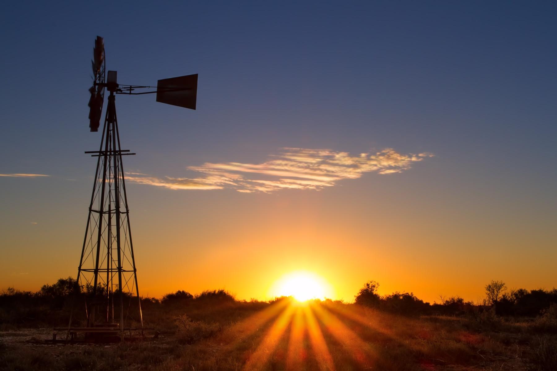 Contact Liveoak Land & Real Estate, Coleman, TX